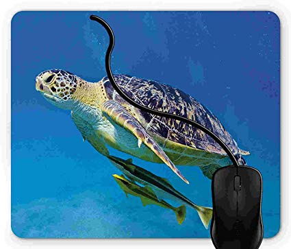Remora fish on sea turtle clipart banner transparent download Amazon.com : Mouse Pad Gaming Turtle, Cute Angry Looking Sea ... banner transparent download