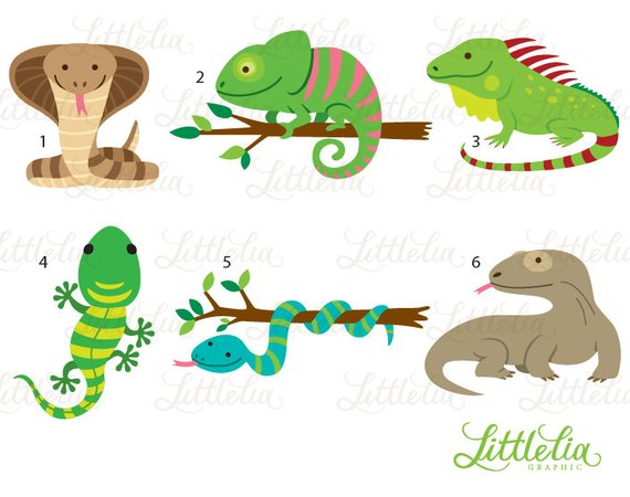Reptile cliparts banner freeuse download Reptile clipart - reptile cute - 16019   Products   Clip art ... banner freeuse download