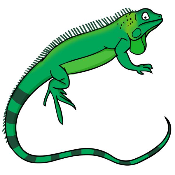 Reptile cliparts picture freeuse download Reptile Clipart   Free download best Reptile Clipart on ... picture freeuse download