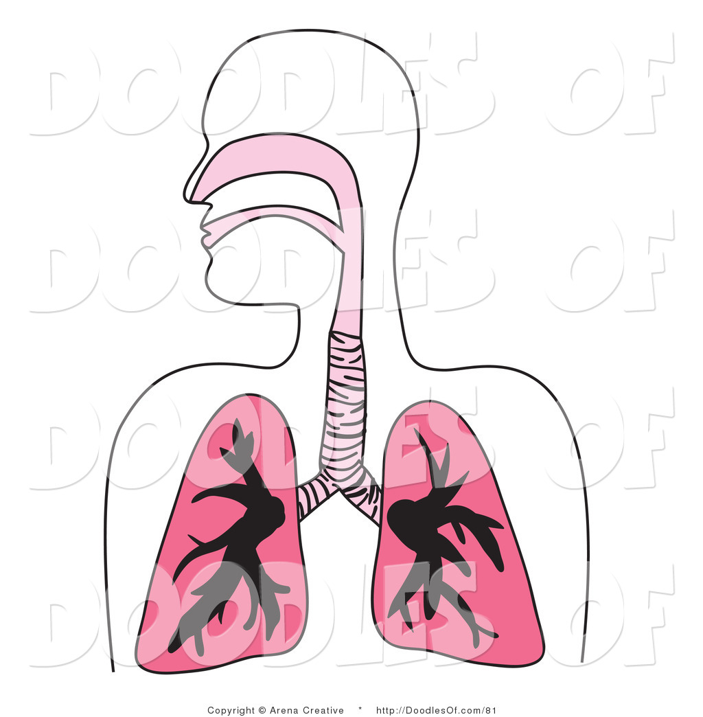 Respiratory system images clipart svg library download Vector Clipart of a Human Respiratory System Diagram in Pink ... svg library download