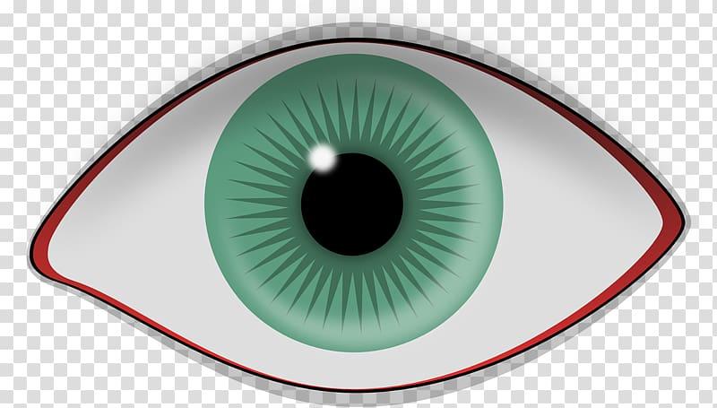 Retina clipart clip art transparent Human eye Retina Iris Visual perception, Eye transparent ... clip art transparent