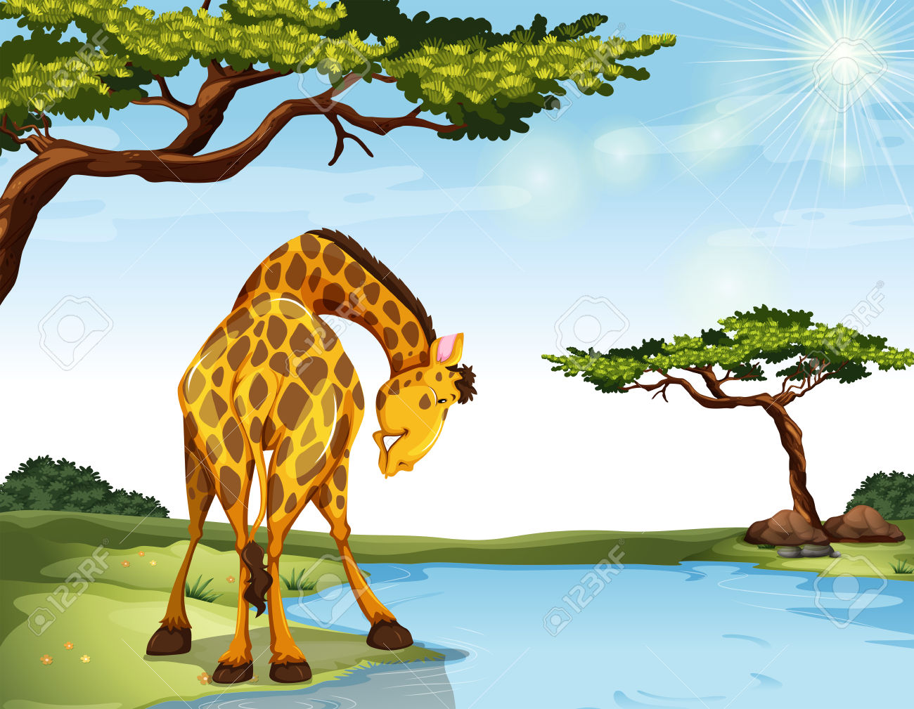 River bank clipart picture Giraffe Standing At The River Bank Royalty Free Cliparts, Vectors ... picture