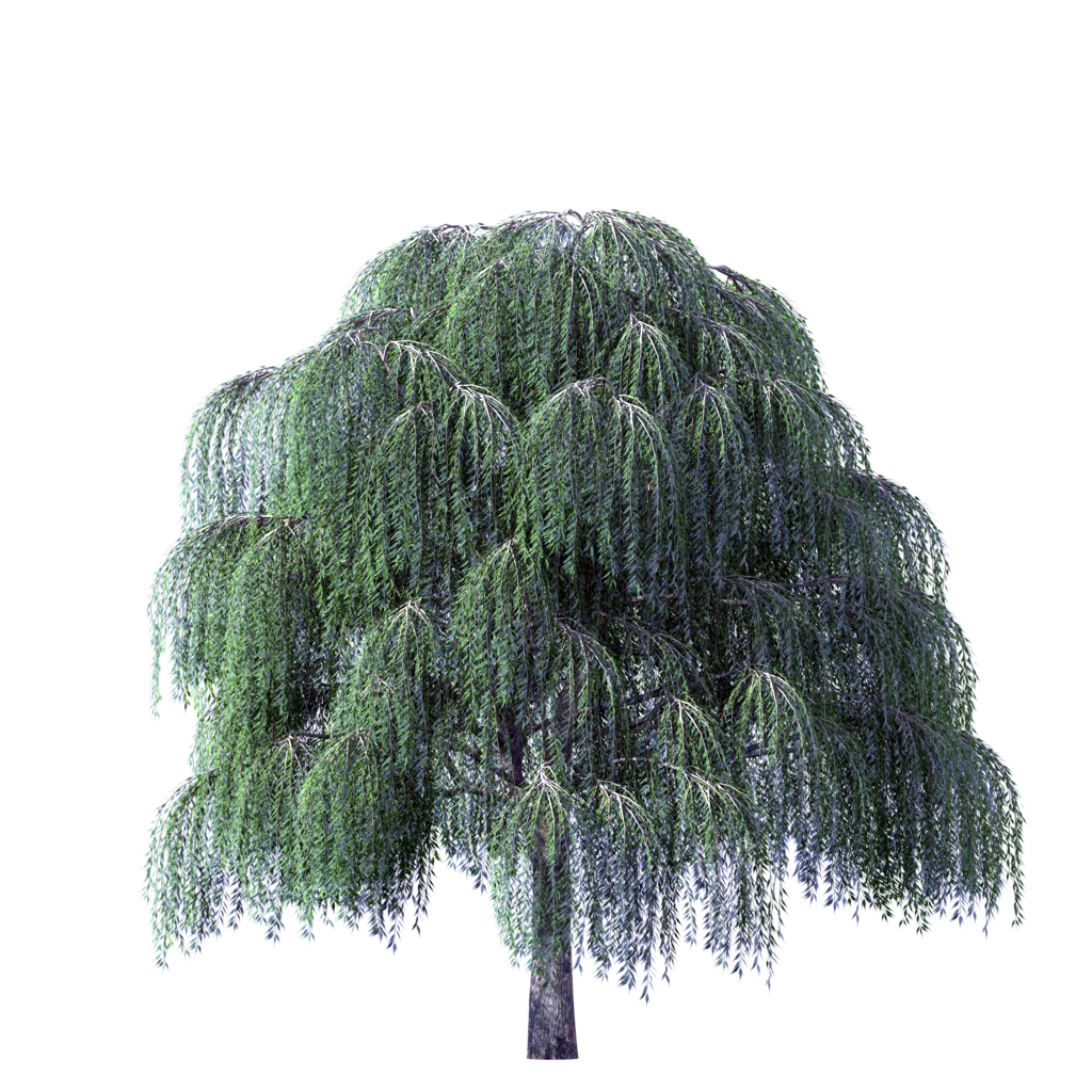 Clipart willow tree svg free stock Image - Tree-Clipart-Weeping-Willow-River.png | Animal Jam Clans ... svg free stock
