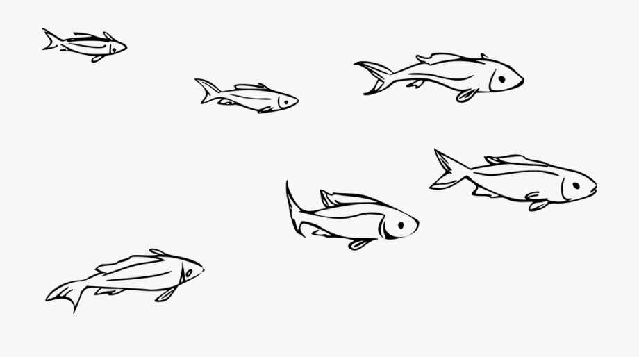 Ocean animals clipart cartoon black and white jpg library library Animal Fish Ocean Ocean Theme River Sea - Small Fish Clipart ... jpg library library