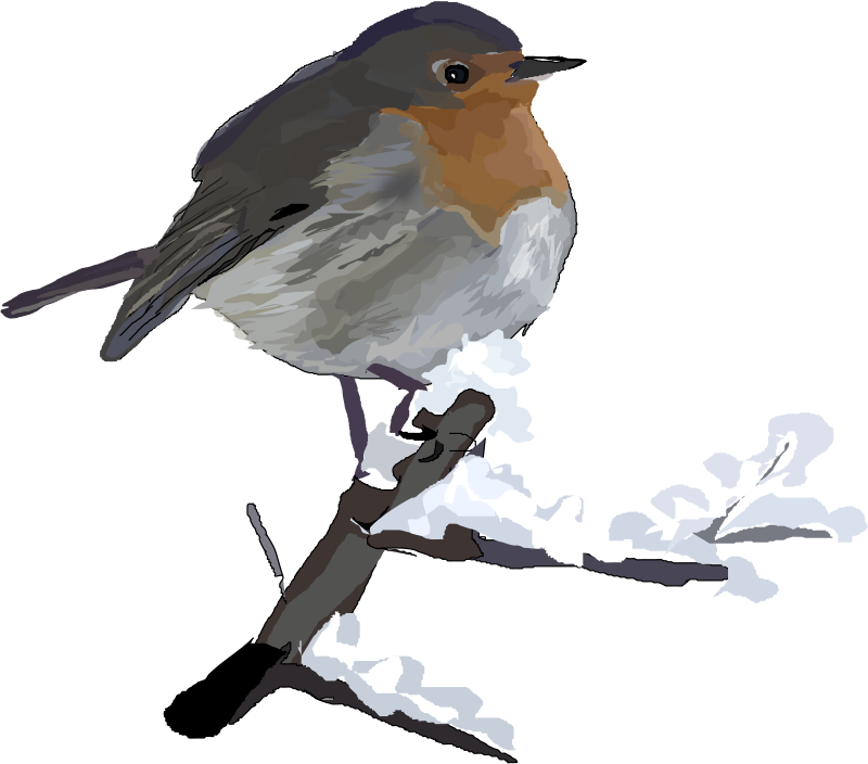 Robin clipart free graphic transparent Free Clipart: Robin   Degri graphic transparent