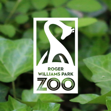 Roger williams zoo logo clipart vector royalty free library Hulafrog | Roger Williams Park Zoo | Hulafrog Mansfield ... vector royalty free library