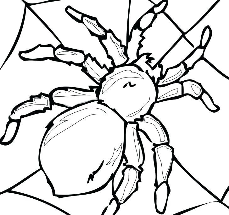 Rollie pollie bug clipart transparent Pill Bug Clipart transparent