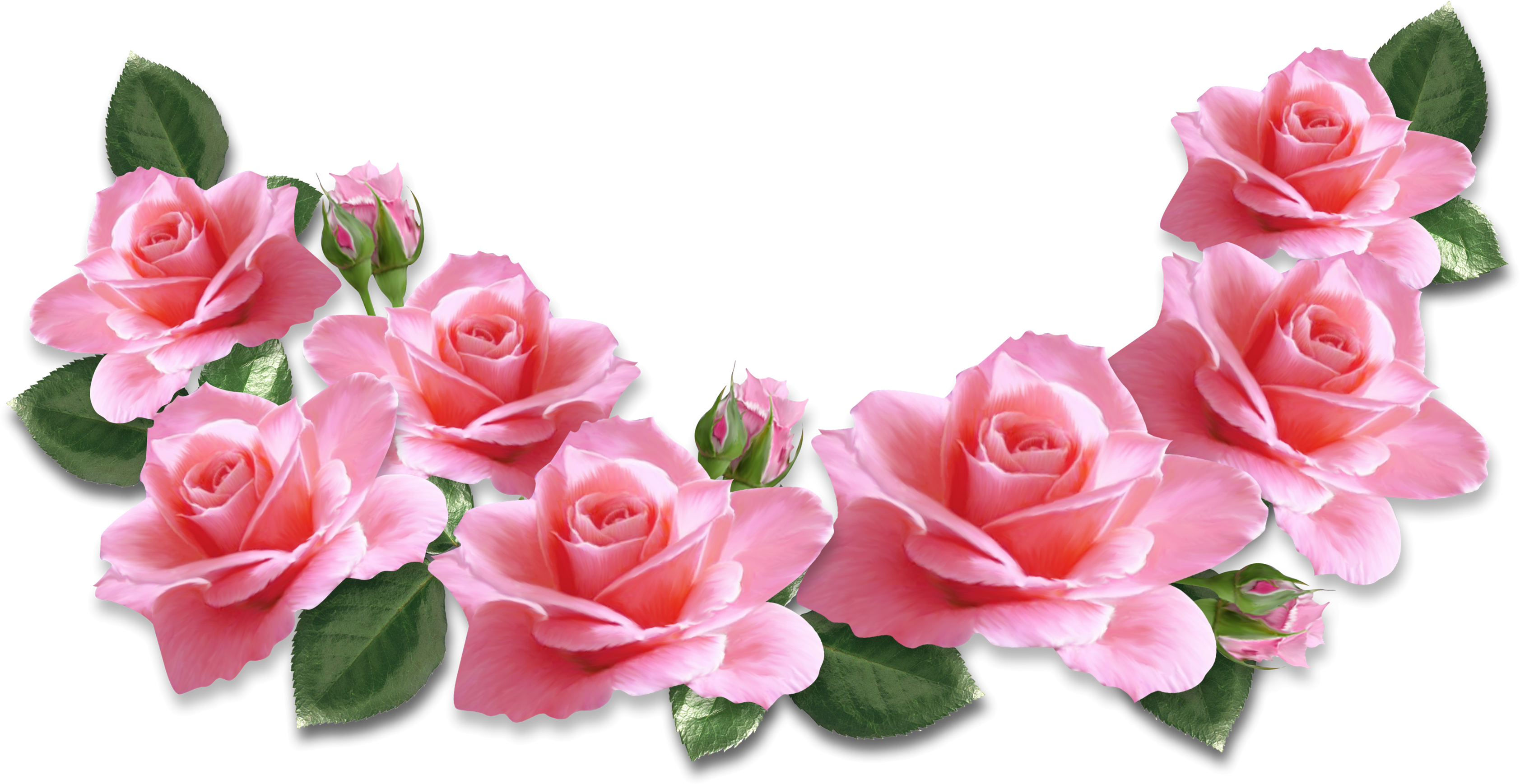 Romantic flower clipart banner freeuse library Pink Roses Decoration PNG Clipart Image | cvetia | Pinterest ... banner freeuse library