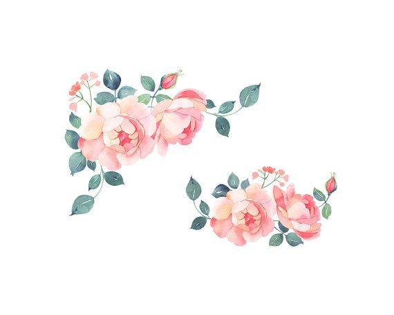 Romantic rose clipart clipart free stock 2019的Romatic roses watercolor clip art, soft pink roses ... clipart free stock