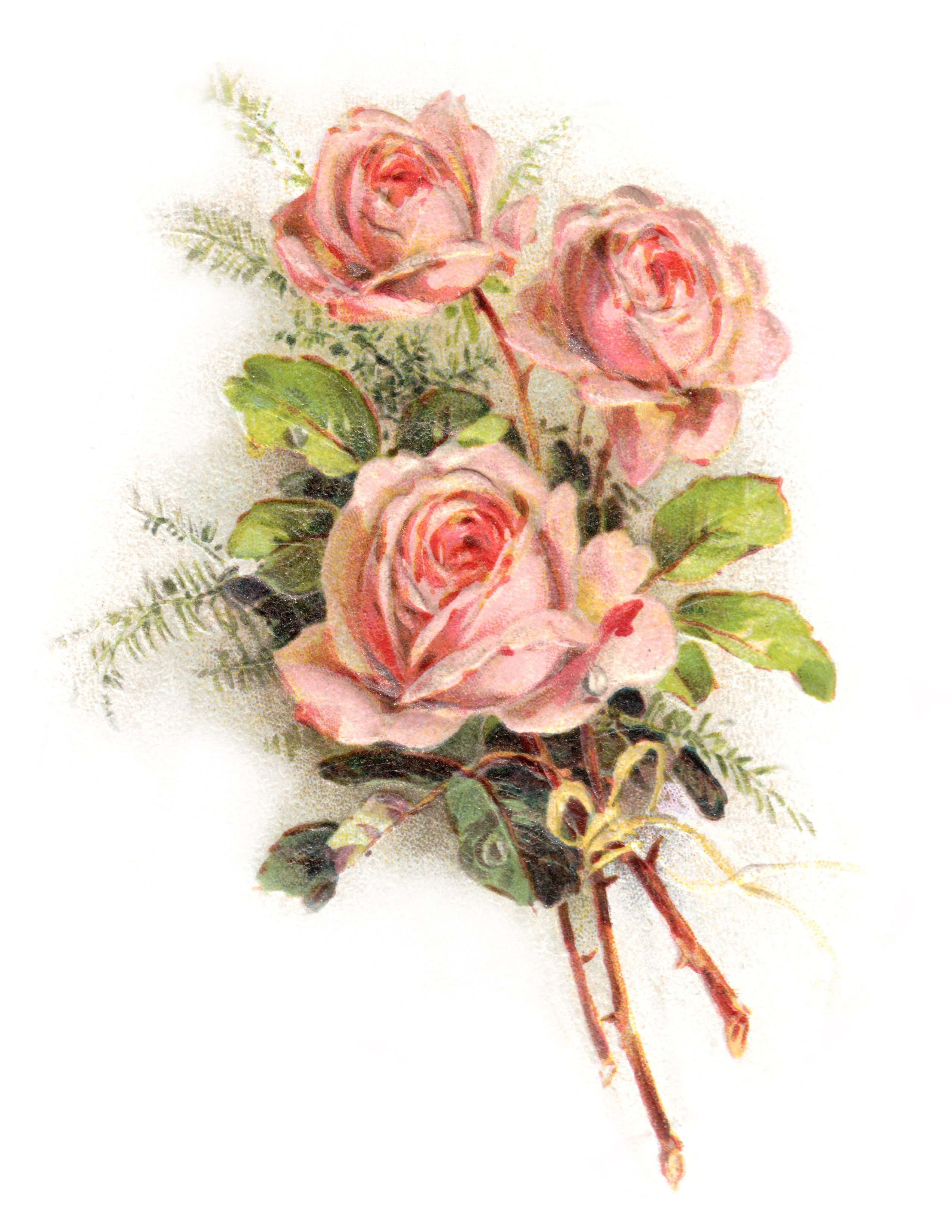 Romantic rose clipart banner stock Royalty Free Images: Romantic Rose Clip Art | Vintage ... banner stock