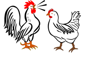 Rooster and hen clipart