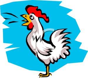 Rooster crowing clipart image free stock A Colorful Cartoon of a Rooster Crowing - Royalty Free ... image free stock