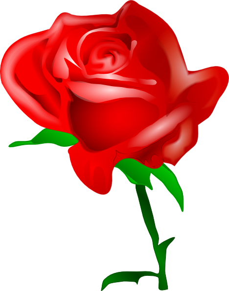 Rosa clipart transparent stock Rosa clipart clipart images gallery for free download ... transparent stock