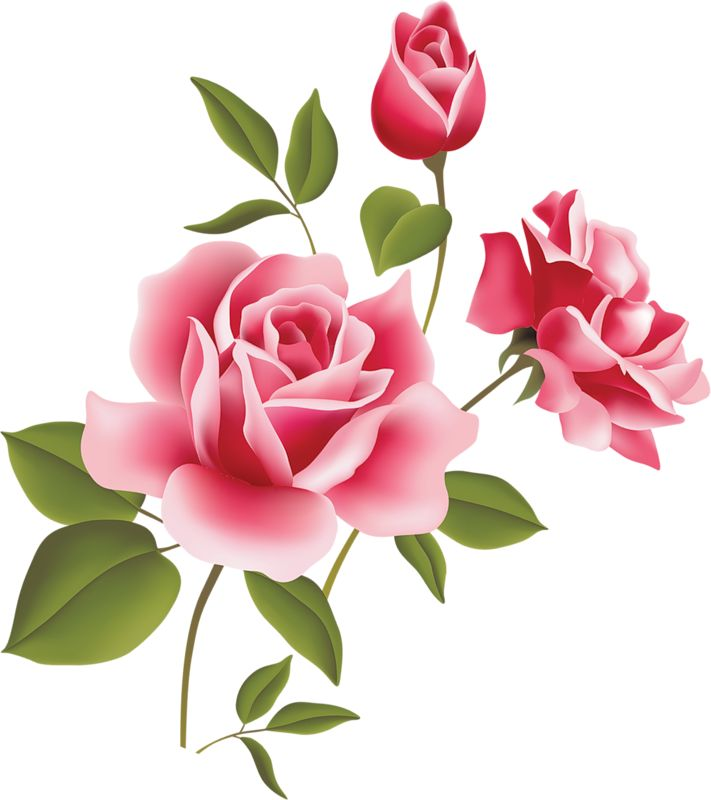 Rose art clipart graphic royalty free library Pink rose art picture clipart laminas decoupage - Cliparting.com graphic royalty free library