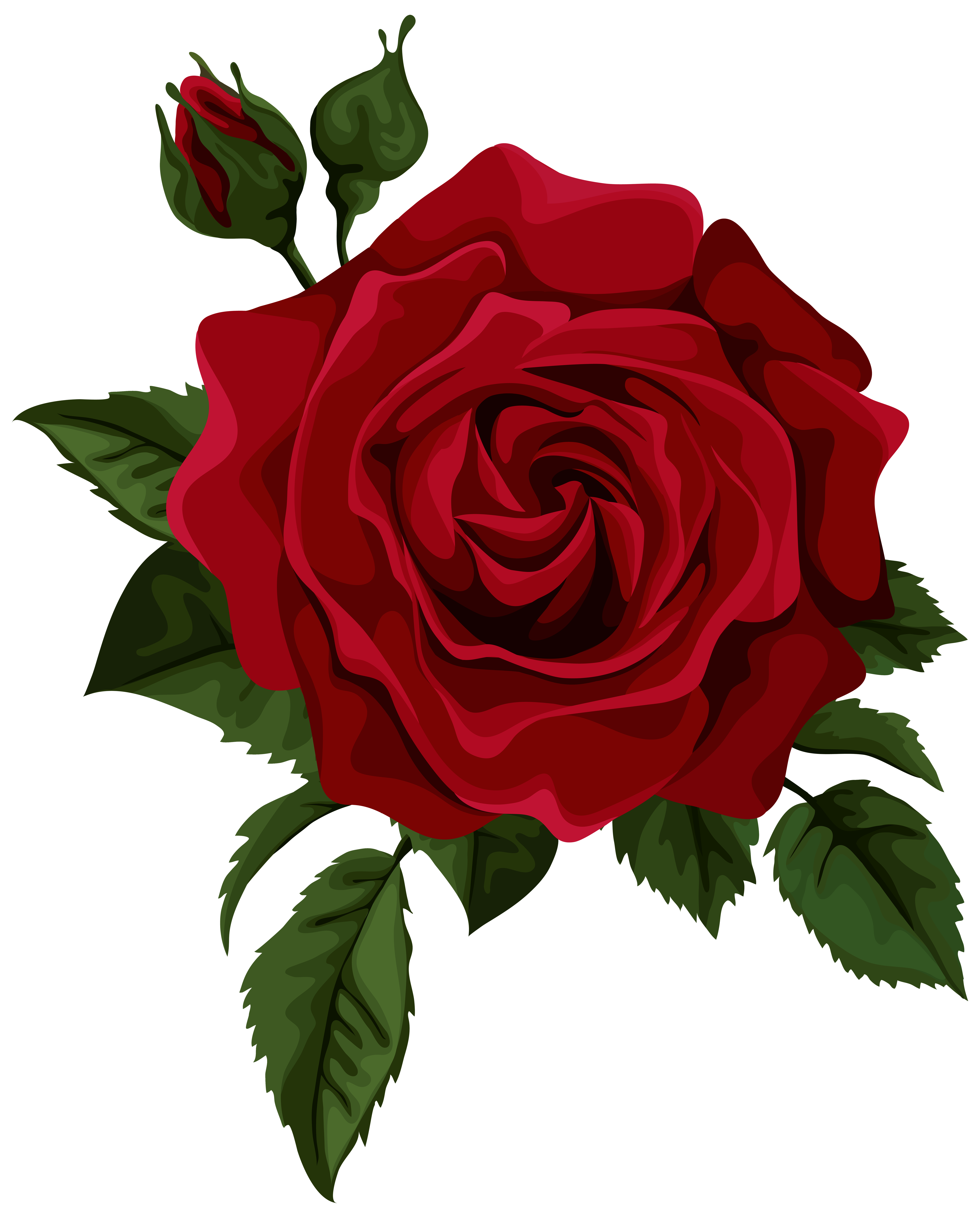 Rose art clipart clip art library stock Red Rose with Bud Transparent PNG Clip Art Picture ... clip art library stock
