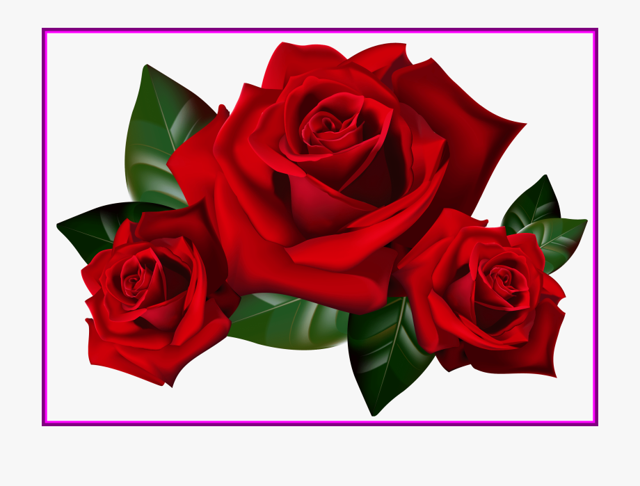 Rose art clipart free library Appealing Bouquet Of Frame Clipart Kid Rose Art Image - Red ... free library
