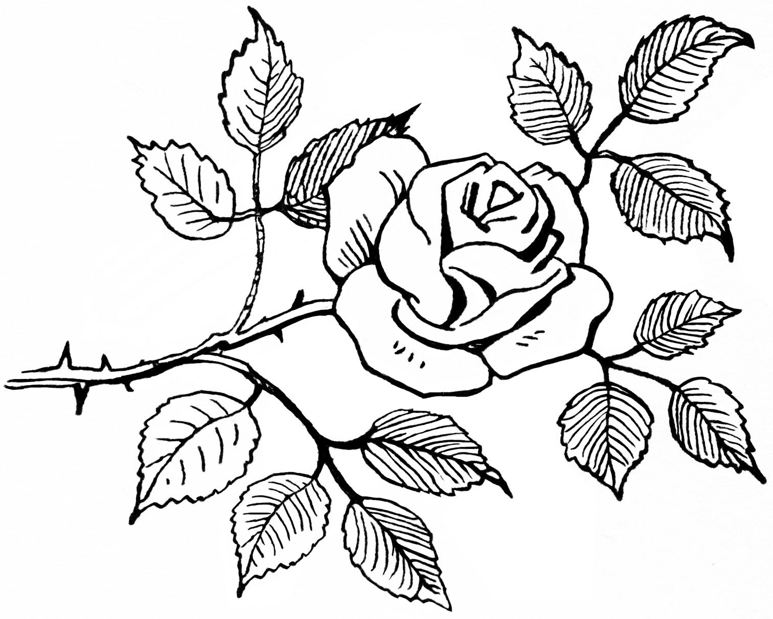 Rose bouquet clipart black and white vector royalty free library Old Design Shop ~ free digital image: black and white rose ... vector royalty free library