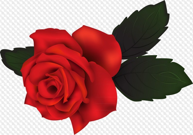 Rose clipart no background vector black and white Rose clipart no background 1 » Clipart Portal vector black and white