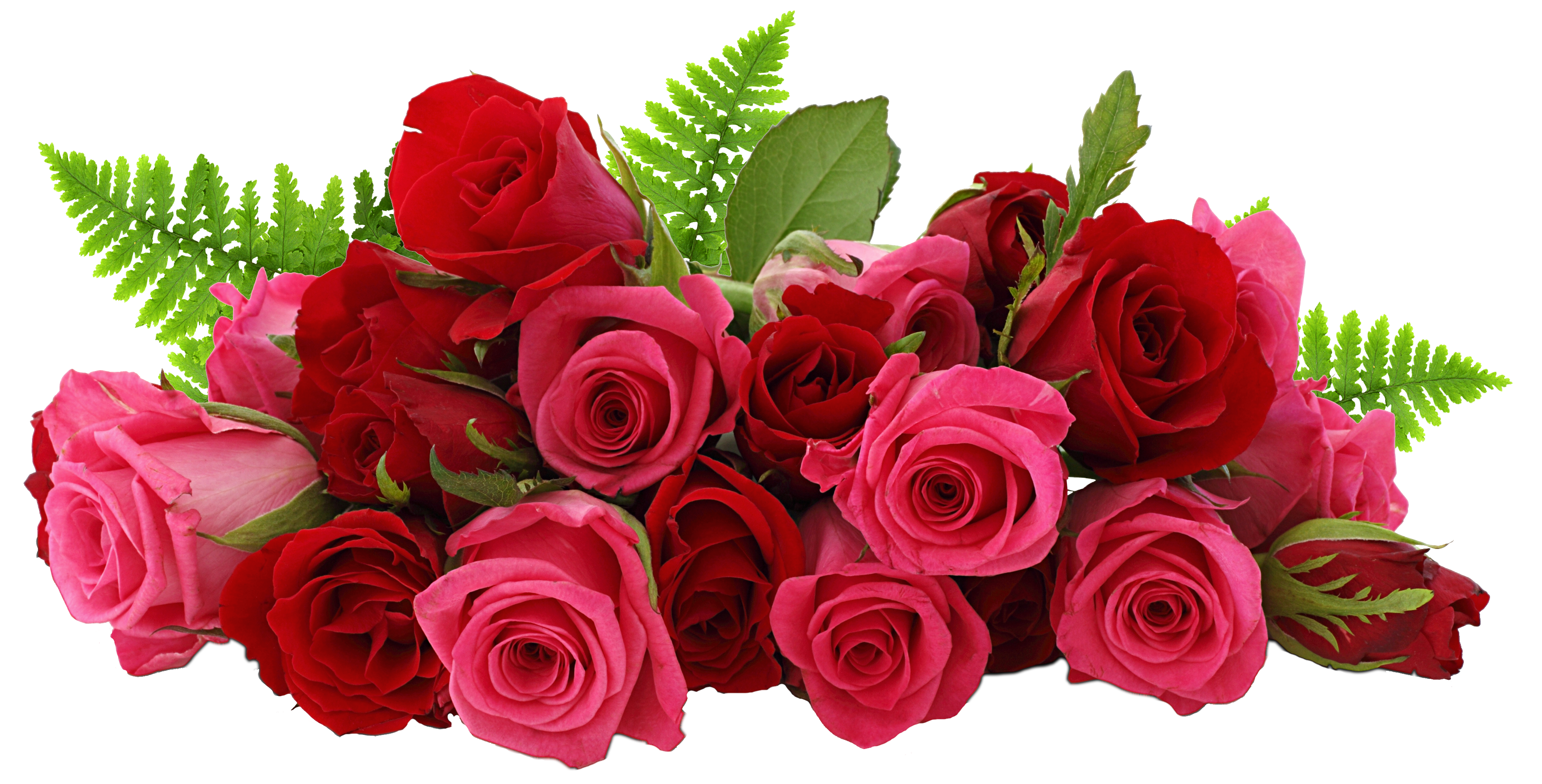 Rose crown clipart download Red and Pink Roses PNG Picture | Gallery Yopriceville - High ... download