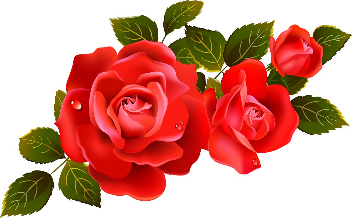 Rose flower clipart clipart transparent library Rose Pictures, Images, Graphics - Page 4 clipart transparent library