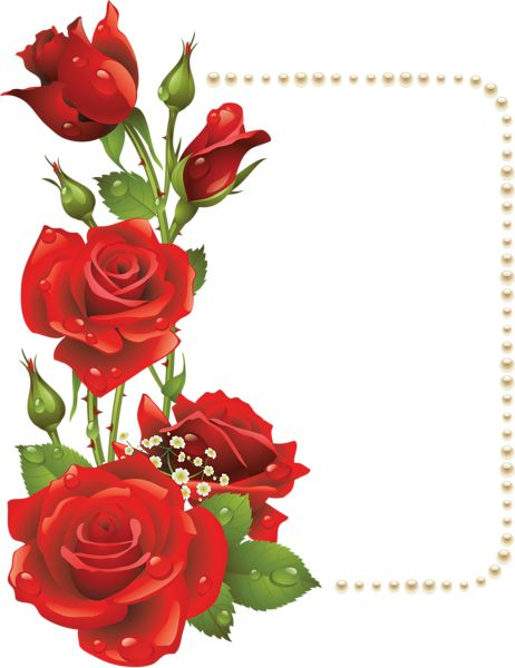 Rose flower clipart png picture freeuse Decoração de rosas vermelhas para Moldura PNG Clipe | ~*♠️Clip ... picture freeuse