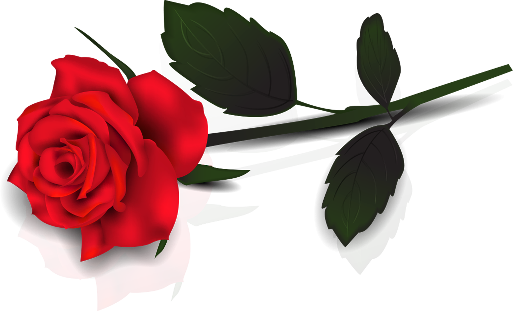 Rose flower clipart png graphic free library Single Rose Clipart - Clipart Kid graphic free library