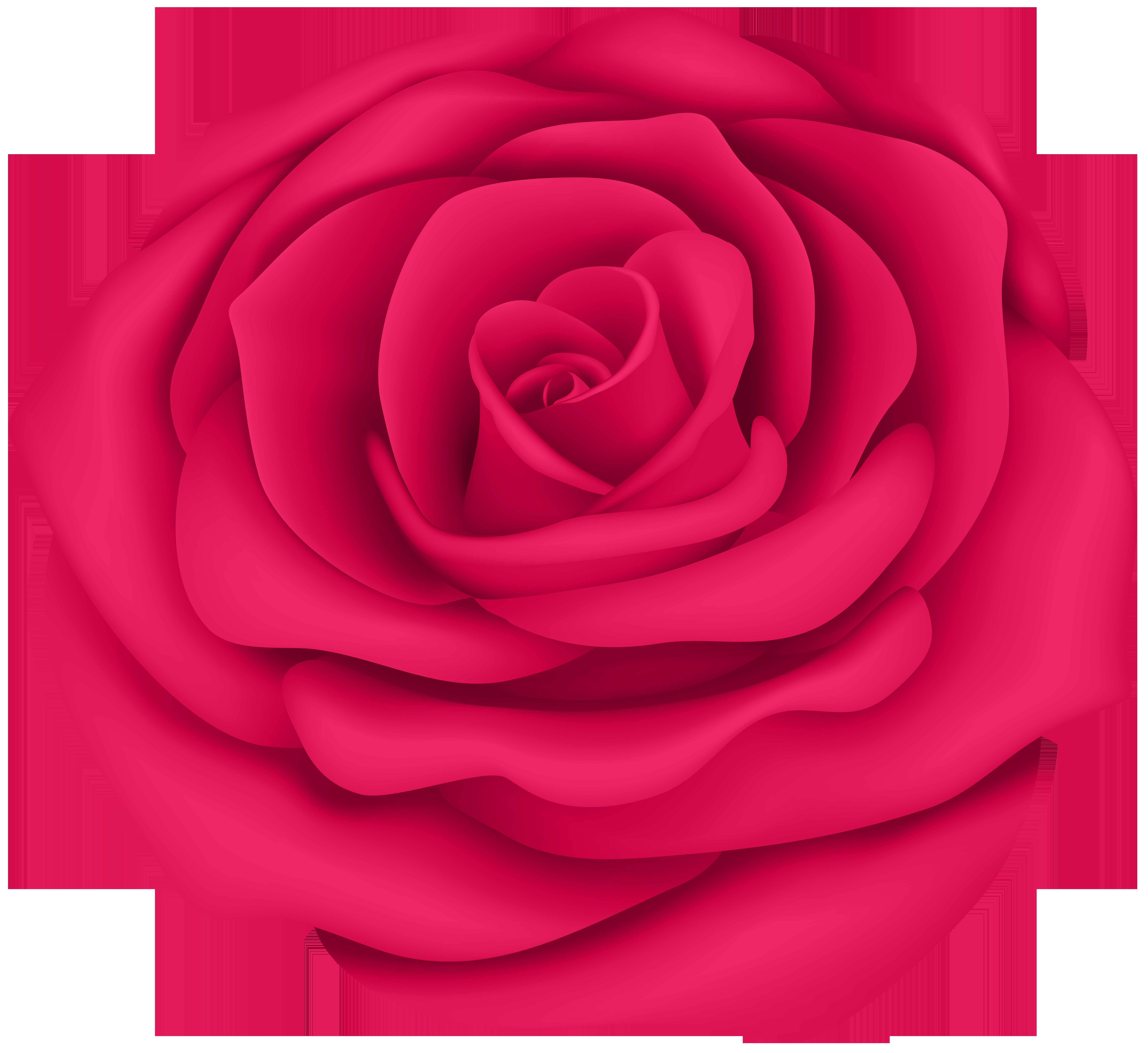 Rose flower images clipart jpg free download Pink Rose Flower Transparent Clip Art Image   Gallery Yopriceville ... jpg free download