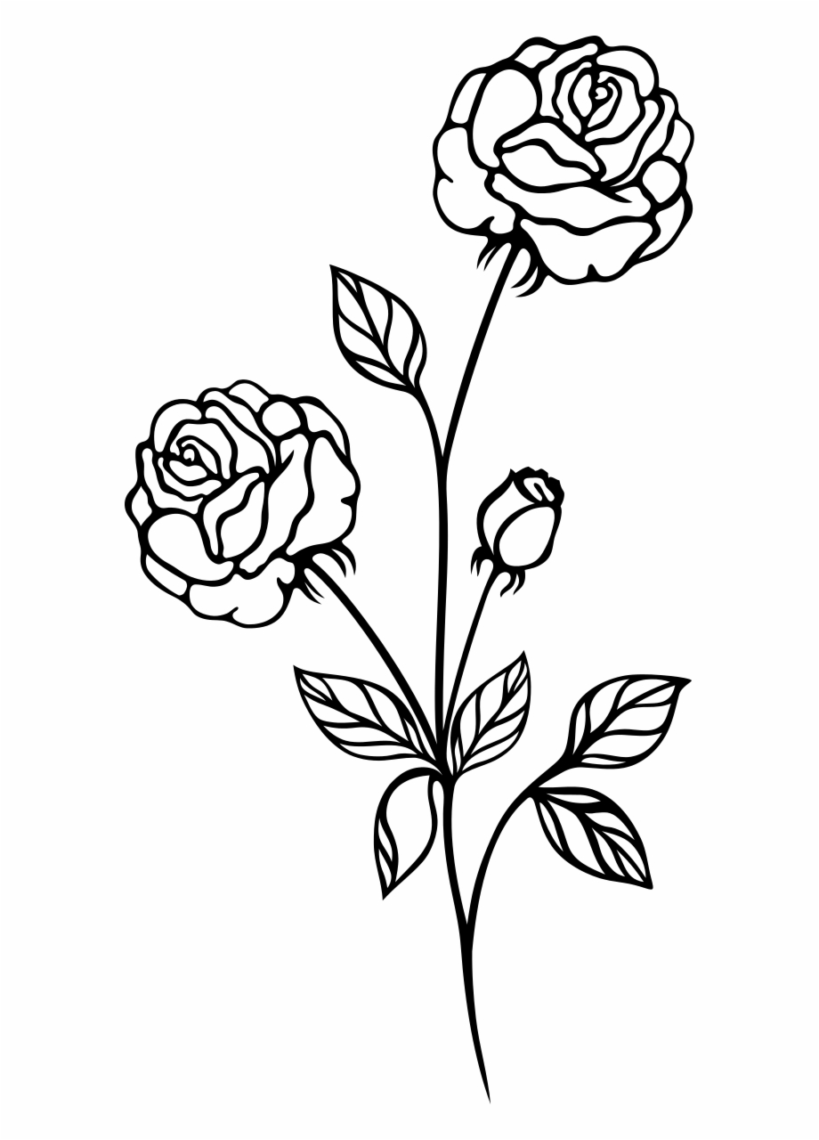 Rose flowers black and white clipart banner download Rose Black And White Clip Art Flowers Roses - Rose Png Black ... banner download