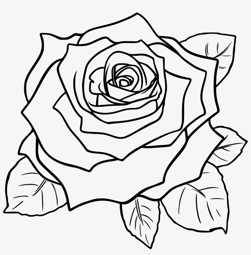 Rose flowers black and white clipart clipart transparent White Rose Clipart Line Art - Rose Flower Clipart Black And ... clipart transparent