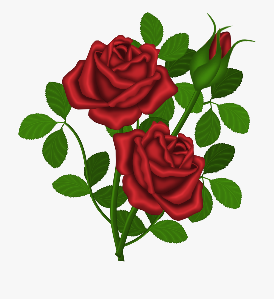 Rose free clipart vector library library Rose Bush Clipart Dozen Red Roses - Rose Bouquet Clip Art ... vector library library