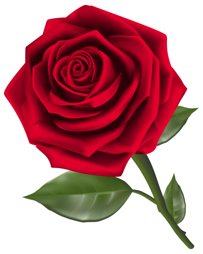 Rose hd clipart clip freeuse library Download ROSE Free PNG transparent image and clipart clip freeuse library
