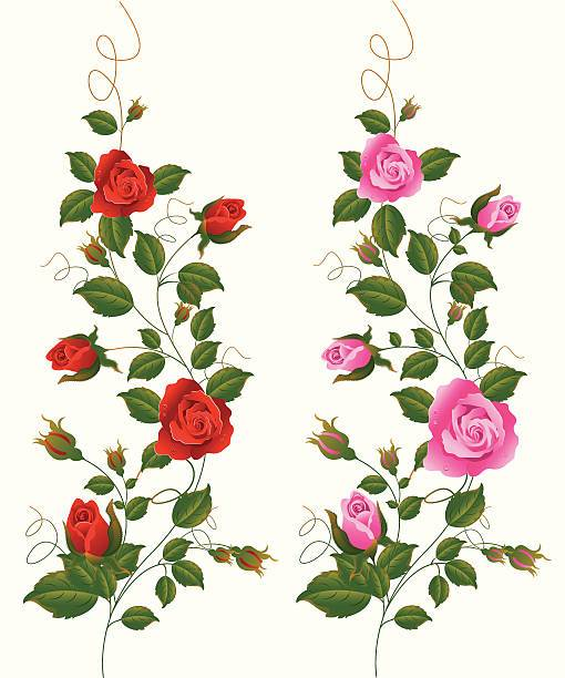 Rose vines clipart clip royalty free library Rose vines clipart 7 » Clipart Portal clip royalty free library
