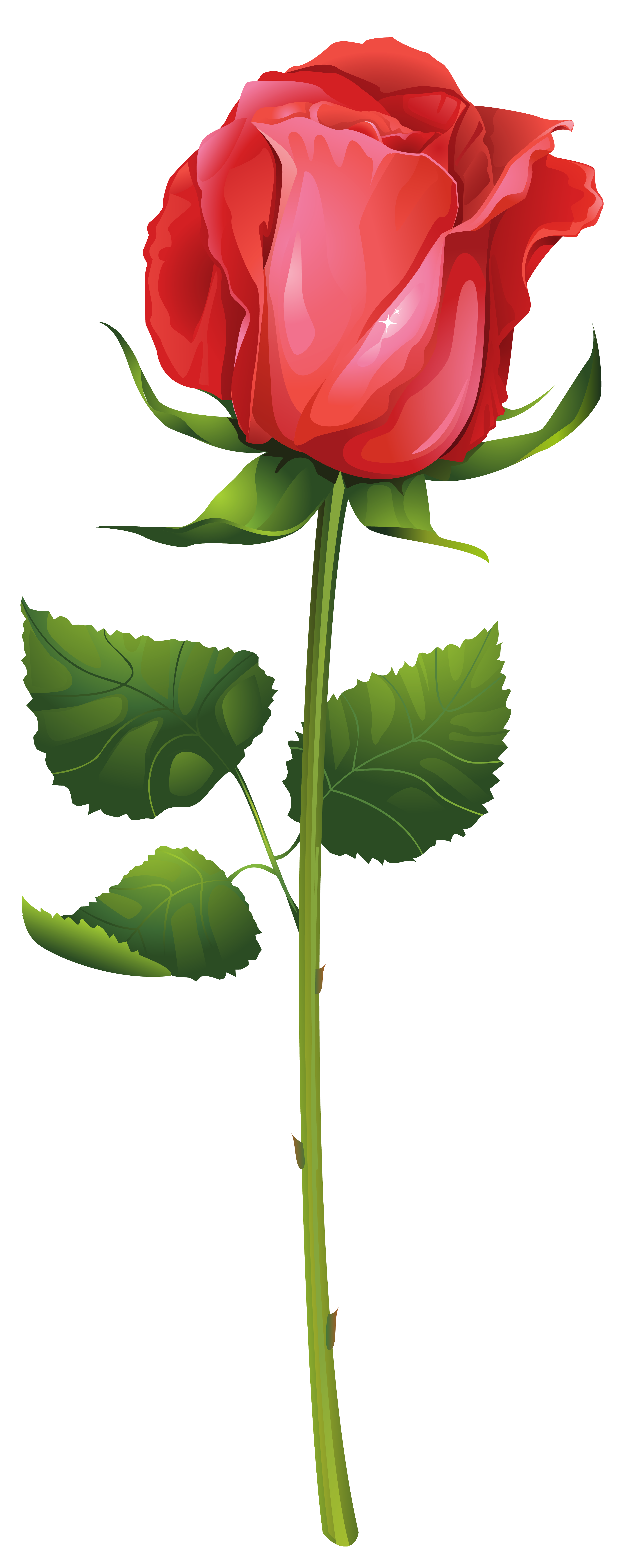 Rose with stem clipart clipart royalty free stock Rose Stem Clipart   Free download best Rose Stem Clipart on ... clipart royalty free stock