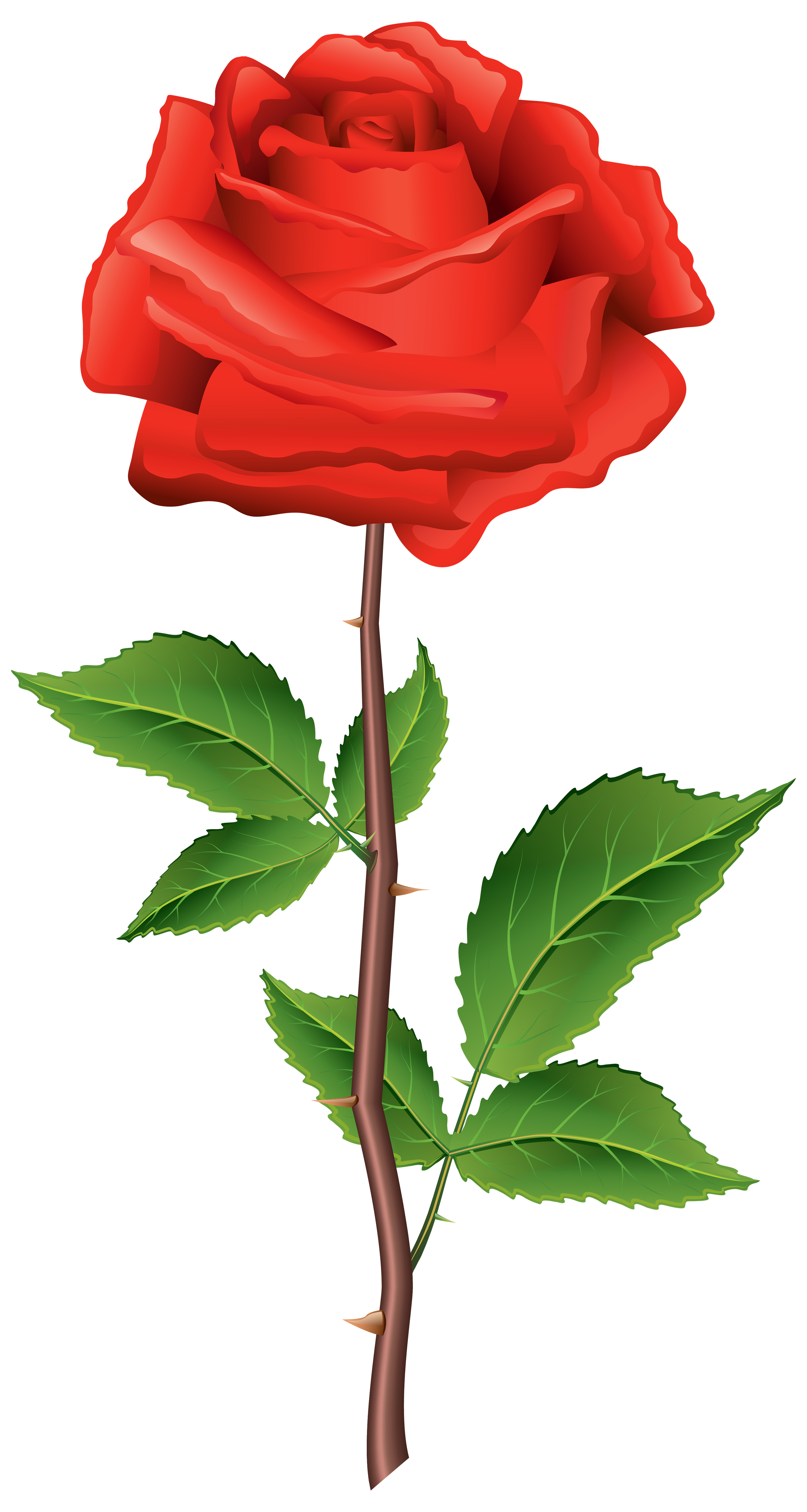 Rose with stem clipart vector black and white stock Stem Red Rose PNG Clipart - Best WEB Clipart vector black and white stock