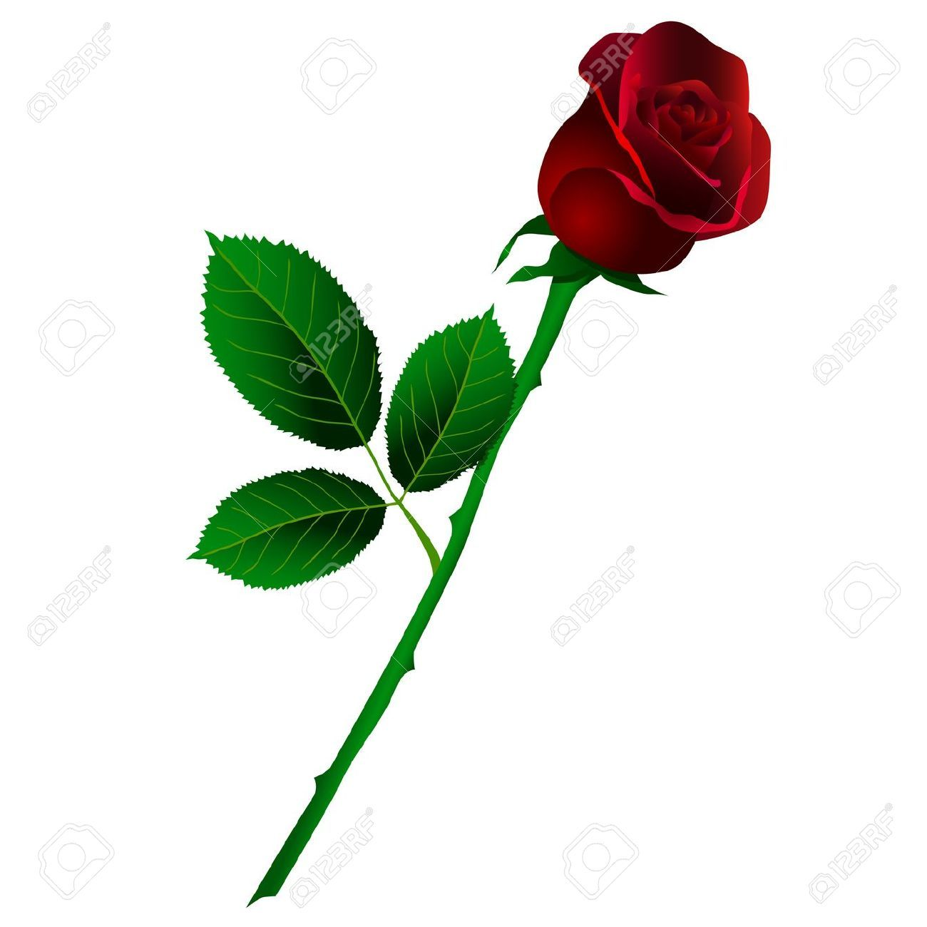 Rose with stem clipart png royalty free Rose with stem clipart » Clipart Portal png royalty free