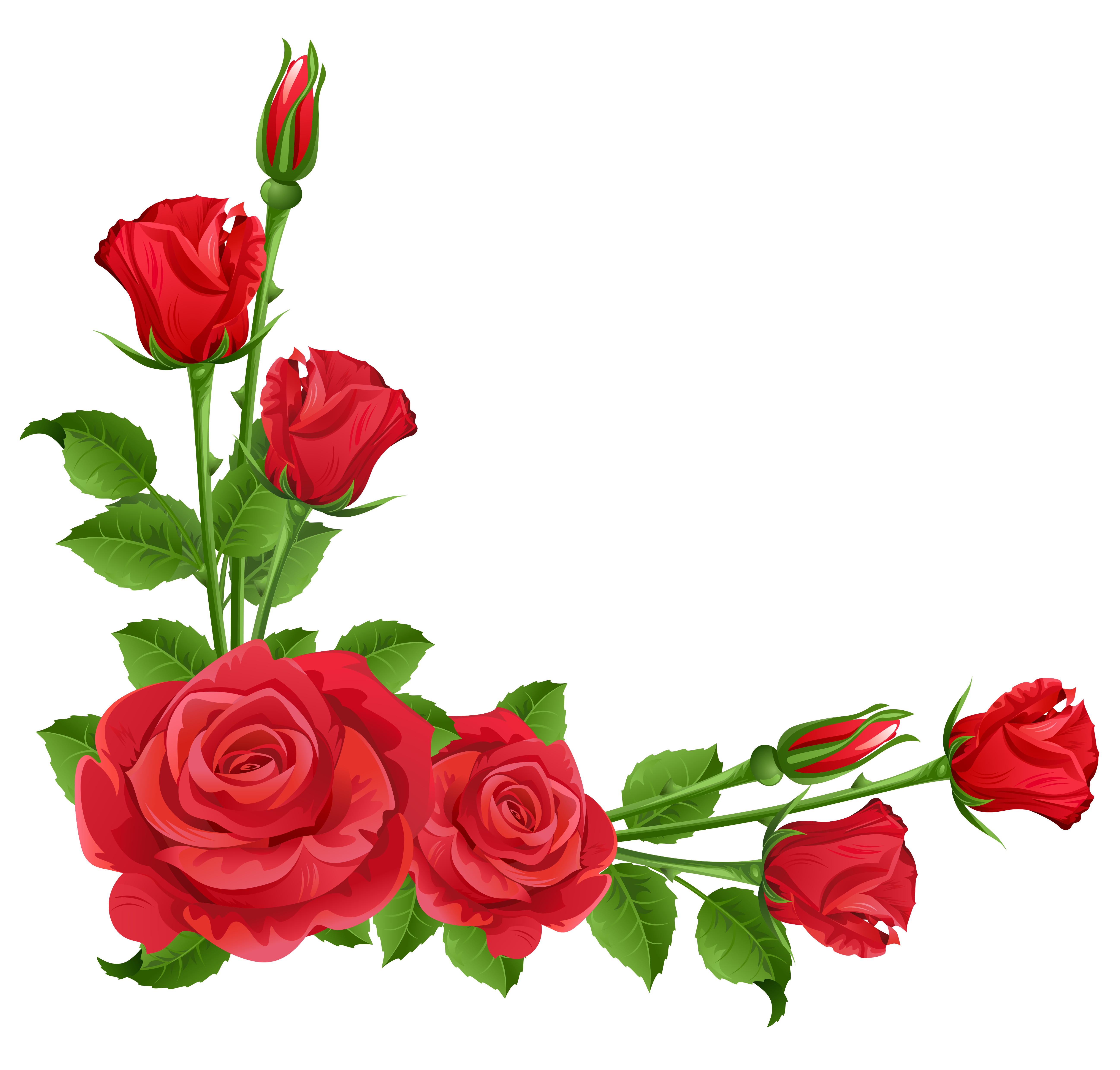 Rose flower border clipart png royalty free library Rose Clipart Transparent Background | Free download best ... png royalty free library