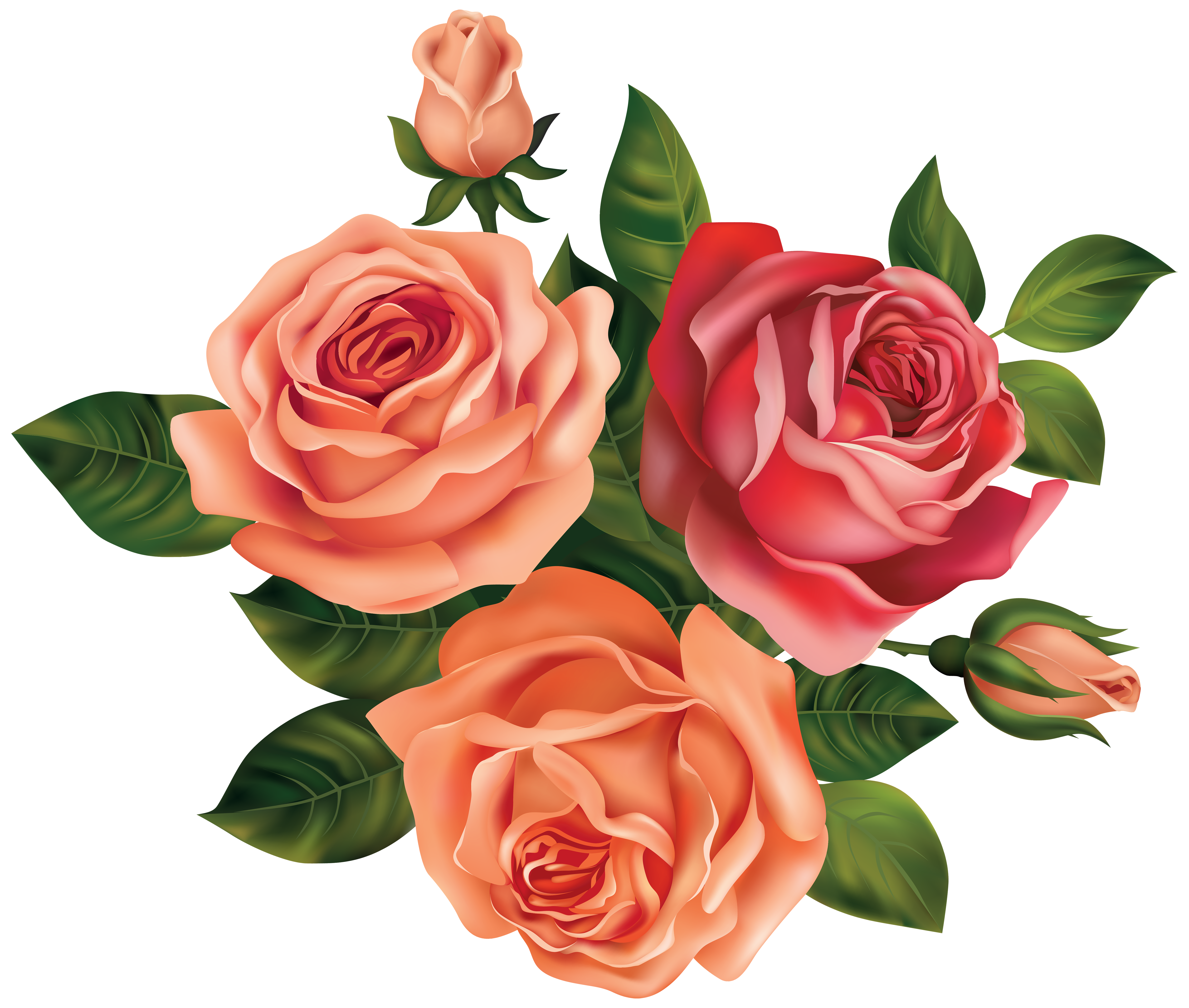 Roses clipart images image royalty free Beautiful Roses Clipart Image | Gallery Yopriceville - High ... image royalty free