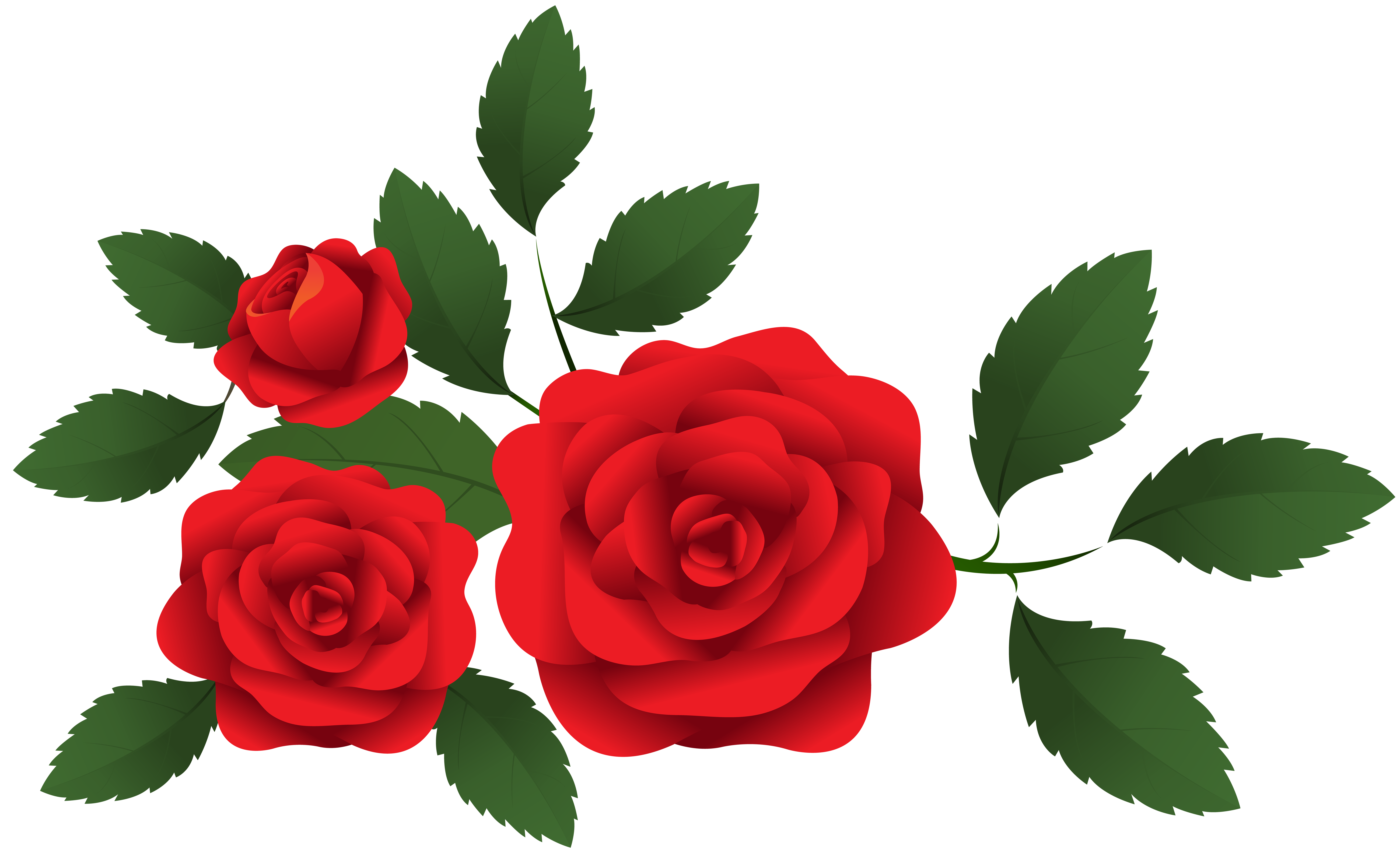 Roses clipart png vector freeuse Red Roses Decoration PNG Clip Art   Gallery Yopriceville ... vector freeuse