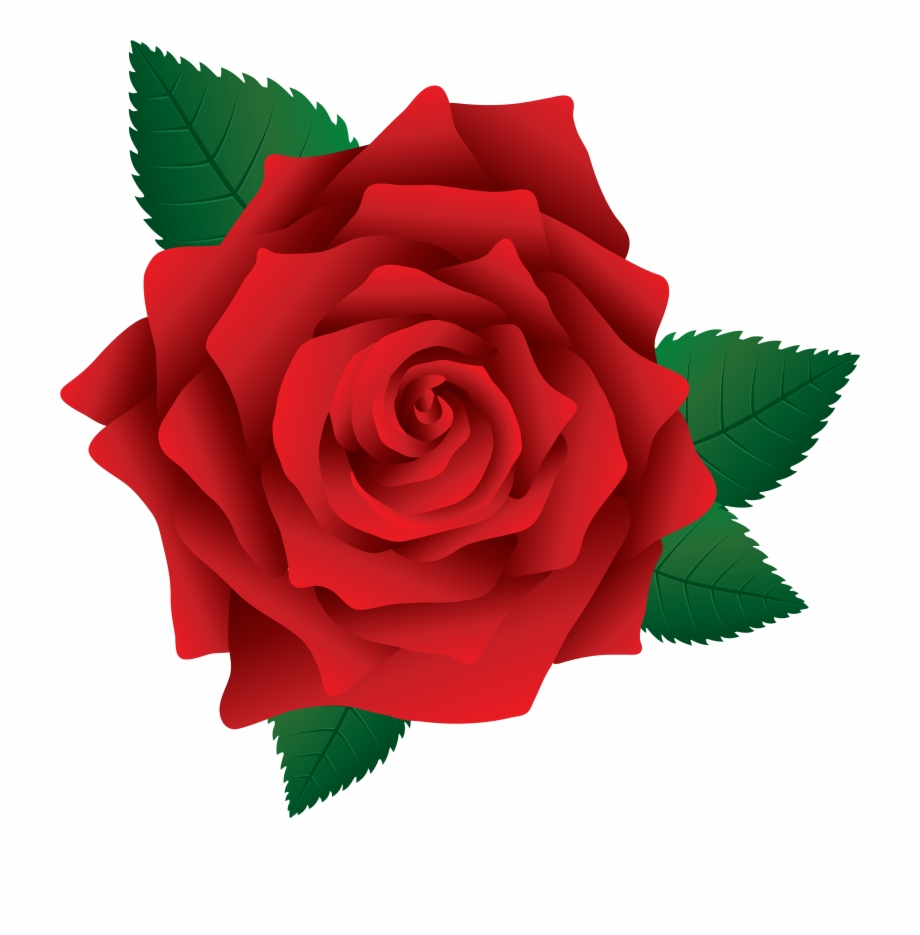 Roses clipart png clip art transparent Rose Clipart Png - Clip Art Rose Png - single red rose png ... clip art transparent