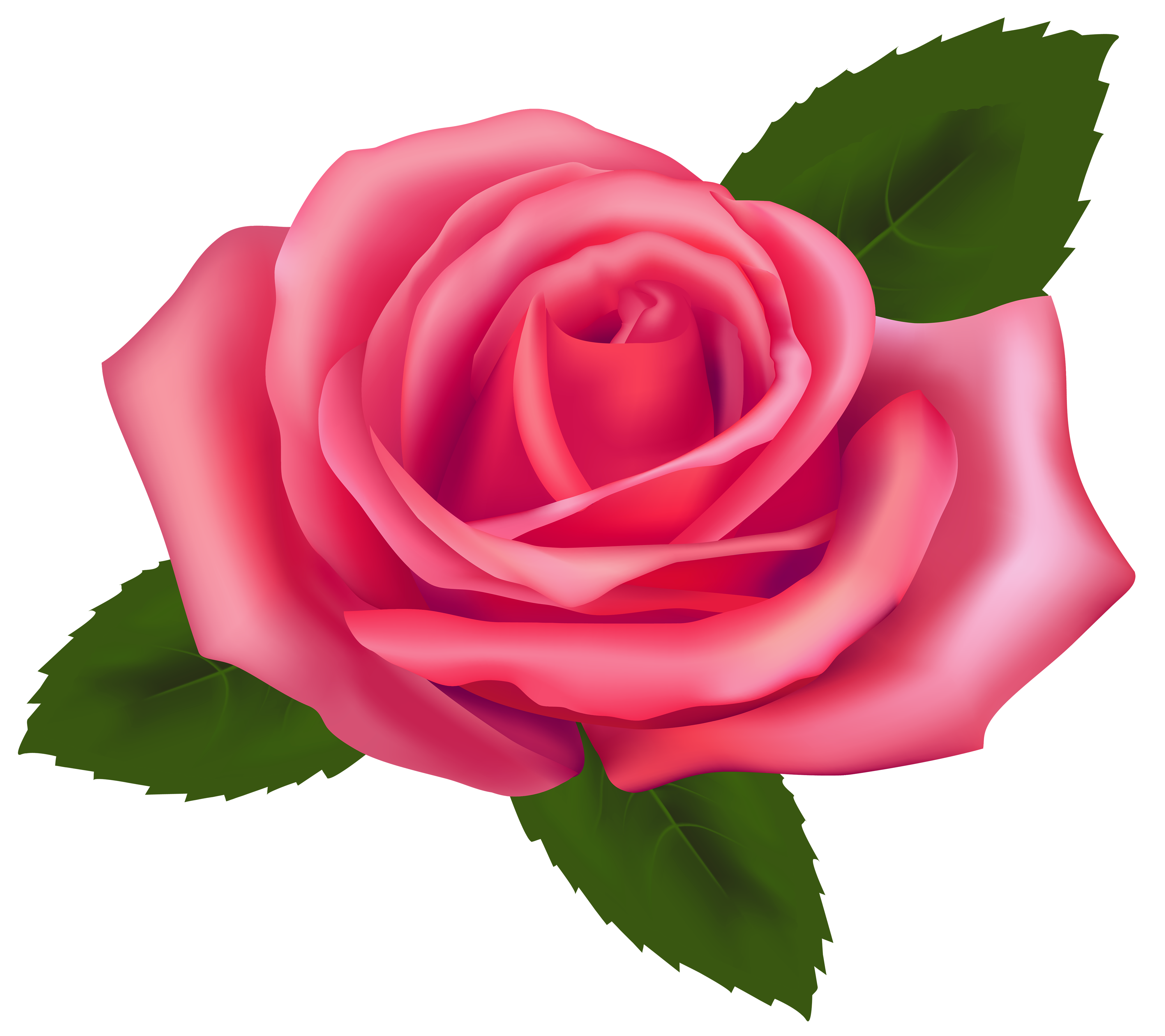 Pink rose flower clipart jpg black and white stock Beautiful Pink Rose PNG Clipart - Best WEB Clipart jpg black and white stock