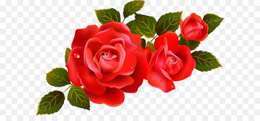 Roses clipart png picture freeuse stock Background Family Day png download - 1172*725 - Free ... picture freeuse stock