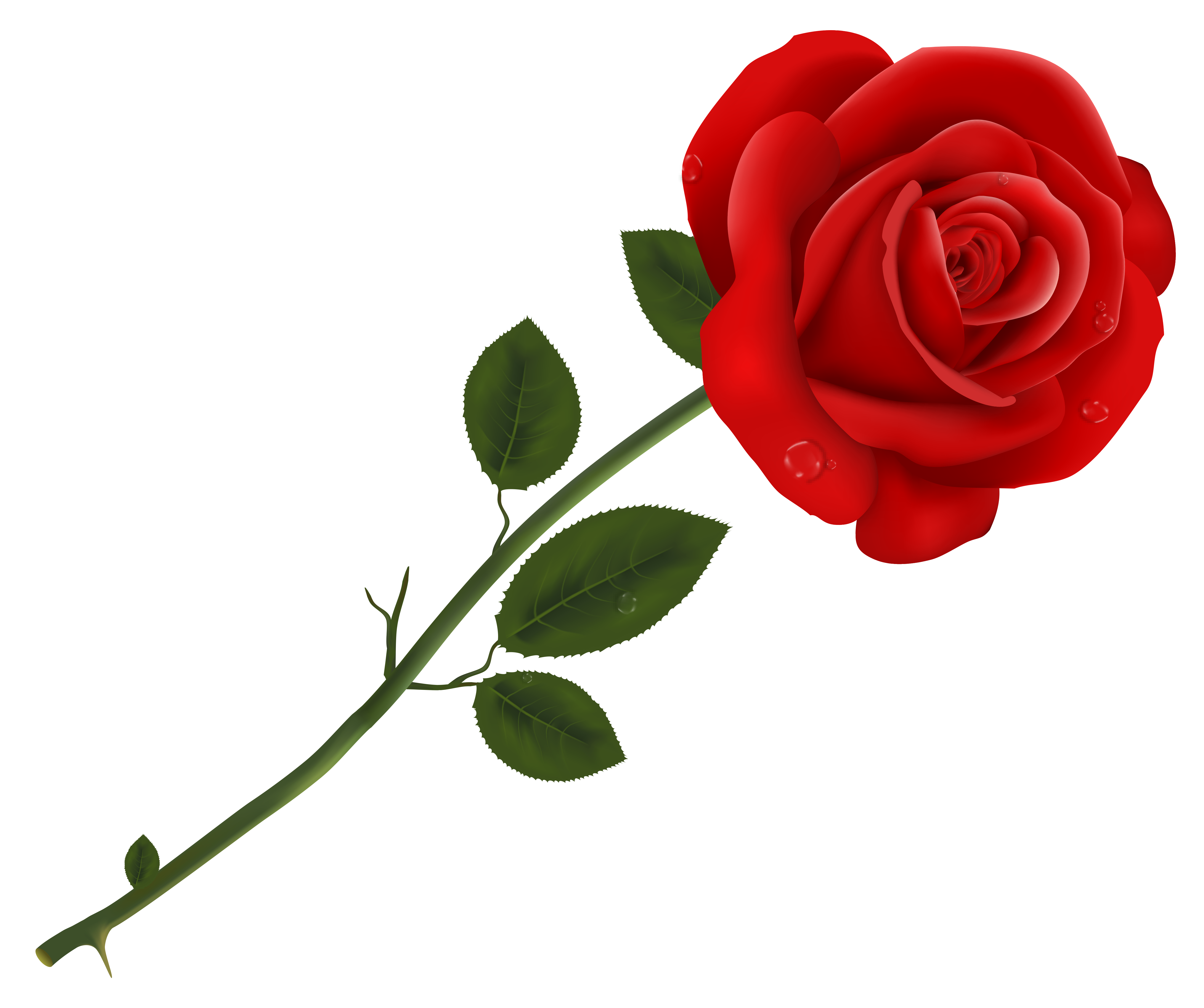Roses clipart transparent background free library Red Rose Transparent PNG Clipart   Gallery Yopriceville ... free library
