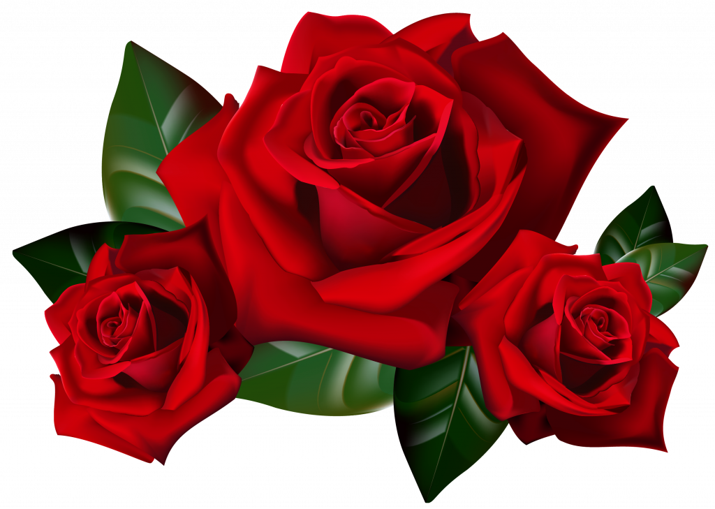 Roses clipart transparent background graphic royalty free download Top 25 Pictures Of Red Roses - #03 - with Transparent ... graphic royalty free download