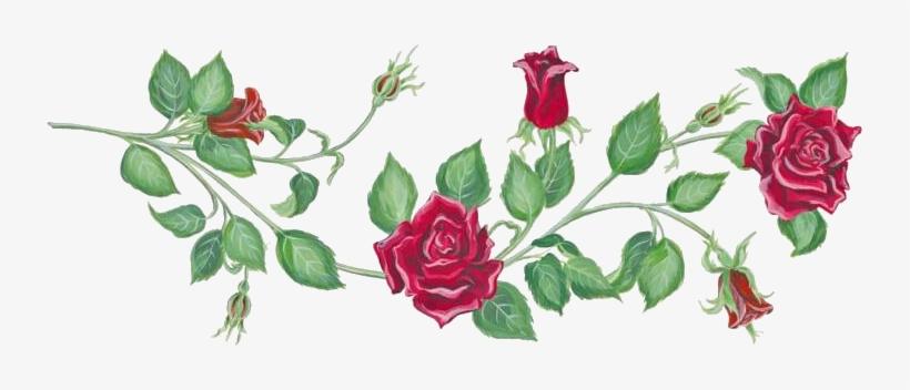 Rosevine clipart vector library download Photo Rosevine - Clip Art Rose Vines - Free Transparent PNG ... vector library download