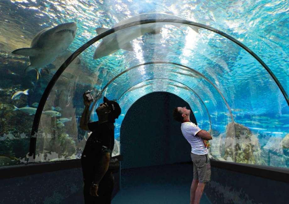 Rotterdam aquarium clipart svg stock Rotterdam Mall Hours – Fashion dresses svg stock