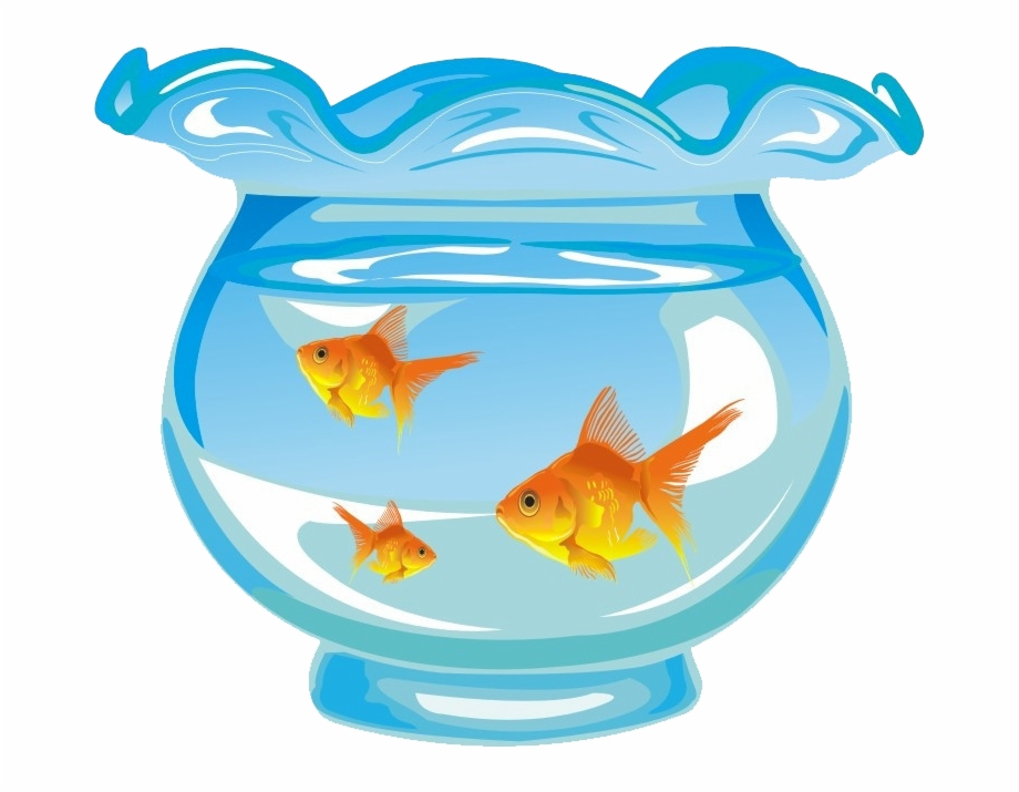 Rotterdam aquarium clipart clip royalty free library Aquarium Png - Aquarium Fish Tank Cartoon Free PNG Images ... clip royalty free library