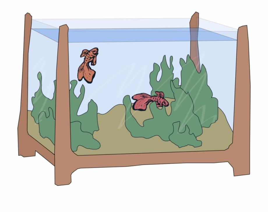 Rotterdam aquarium clipart png stock Goldfish Drawing Aquarium Cartoon - Aquarium Cartoon Free ... png stock