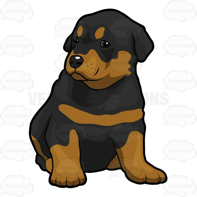 Rottwieler clipart freeuse library rottweiler clipart Rottweiler Puppy Clip art | Draw v roce 2019 freeuse library