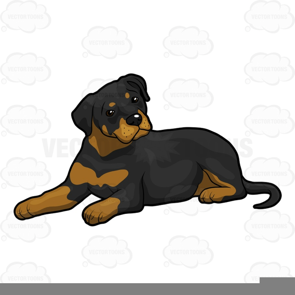 Rottwieler clipart banner freeuse library Rottweiler puppy clipart 1 » Clipart Portal banner freeuse library