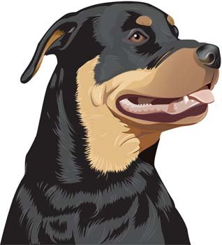 Rottwieler clipart clip art royalty free Free Rottweiler 2s Clipart and Vector Graphics - Clipart.me clip art royalty free